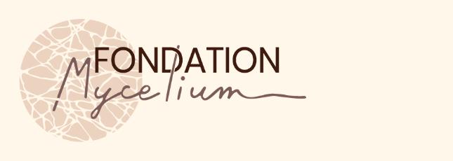 Un nouveau site pour la fondation Mycelium!